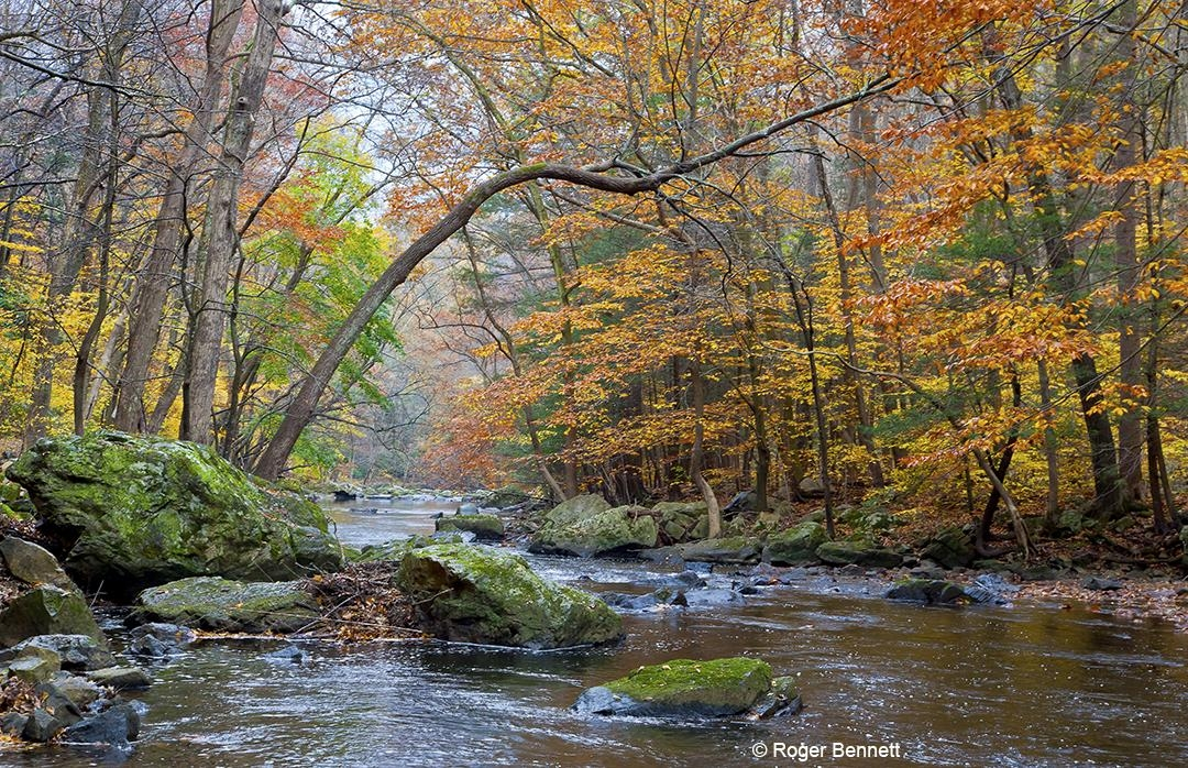 Raritan River in Fall, New Jersey